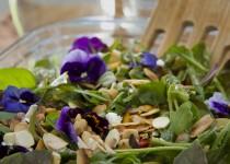 delicious easy salad